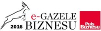 Business e-Gazelles 2016